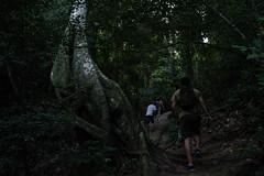 Morro da Urca. (San.Mart) Tags: morro da urca selva brasil rio