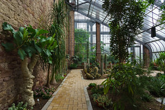 Kakteenhaus (KaAuenwasser) Tags: kakteenhaus kakteen haus gewächshaus historisch alt modern pflanzen dornen stacheln sukkulenten weg glas botanischergarten karlsruhe schlosskarlsruhe