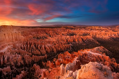Bryce Delight (ernogy) Tags: bryce ernogy utah southwest usa mountains desert forest usnp nationalpark brycecanyon sunset landscape spires hoodoo