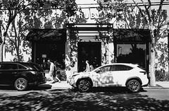 Fourth Street, Berkeley CA (Postcards from San Francisco) Tags: m2 jchstreetpan400 35mmkonicaminoltauchexanonl35mmf2 film analog berkeley rodinal
