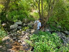 Trail crossing of Cedar Creek (ronking1) Tags: julian california unitedstatesofamerica