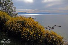 Beautiful seascape in Croatia (chk.photo) Tags: ocean landschaft nature naturewatcher outdoor landscape water natur naturemasterclass light ngc flora kroatien croatia flickrtravellaward flickr meer