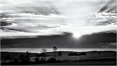 Light won't disappear... (Ody on the mount) Tags: abendlicht anlässe bäume em5 felder filmkorn gegenlicht hdr himmel landschaft licht omd olympus pflanzen rahmen schwäbischealb sonnenuntergang wanderung wolken bw blackandwhite clouds landscape monochrome sw schwarzweis sunset