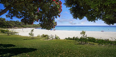 SWE 011-Meelup Beach 5872