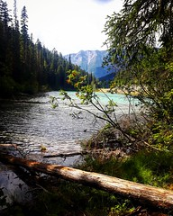 Wander where your feet take you..... (jessy.blue.eyed.wolf) Tags: trees mountains lake water dam greenwater peaceful log grass nature outdoors woodland fishing hike