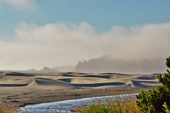 Yaquina head emerges from the fog (Lostinplace) Tags: oregon yaquina newport dunes fog stream pine surf