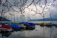 Switzerland - Thunersee (andrei.leontev) Tags: thunersee lacdethoune lac switzerland suisse lake lakethun aneilbheis aneilvéis ελβετία elveţia helvetia huiterangi isveçrə isviçre żvizzera 瑞士 schweiz 스위스 שווייץ שװײץ швeйцapия suíça suïssa スイス suitsirlantu suitza suiza svájc швајцарија швајцарска švajčiarsko šveicarija šveice sveis sveits šveits sveitsi svejts շվեյցարիա švica švicarska sviss svizra svizzera švýcarsko šwicarska swiss yswistir ස්විට්සර්ලන්තය switserland szwajcaria thụysĩ zwitserland சுவிச்சர்லாந்து سوئٹزرلینڈ