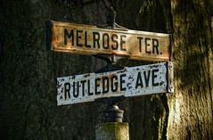 Street signs (romeos115) Tags: signs street tree direction community crossings rusty metal old weathered