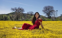 In the countryside among millions of flowers (PeterThoeny) Tags: wilsoncorner creston california usa field pasture flowers bloom superbloom californiasuperbloom yellow woman portrait dress red reddress landscape sky tree windmill countryside outdoor clear day sony a6000 selp1650 raw photomatix hdr qualityhdr qualityhdrphotography 2xp fav200