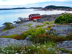 Seaside. Summer. Hvaler. Norway.