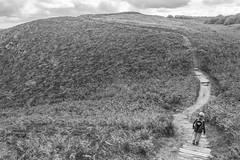 the long way home (stevefge (away travelling)) Tags: 2019 bretagne brittany erquy france coast people candid landscape blackandwhite bw zw zwartwit monochrome path horizon steps nikon reflectyourworld unsuspectingprotagonists unsuspecting