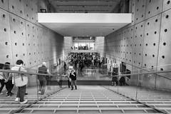 Μέσα στο μουσείο της Ακρόπολης - Inside the Akropolis museum (KostasMo) Tags: ακρόπολη ελλάδα μουσείο αθήνα acropolis athens museum parthenon greece ancient nikon d7200 tokina1120