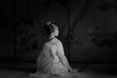 Maiko_20190630_121_5 (Maiko & Geiko) Tags: 20190630 eiunin temple kanohisa kyoto maiko 舞妓 永運院 叶久 京都 叶家 kanoya