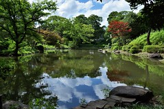 Reflections (Abhay Parvate) Tags: 有栖川宮記念公園 blue sky clouds nature water reflection colors