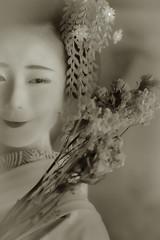 Maiko_20190630_121_14 (Maiko & Geiko) Tags: 20190630 eiunin temple kanohisa kyoto maiko 舞妓 永運院 叶久 京都 叶家 kanoya