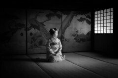 Maiko_20190630_121_16 (Maiko & Geiko) Tags: 20190630 eiunin temple kanohisa kyoto maiko 舞妓 永運院 叶久 京都 叶家 kanoya