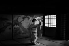 Maiko_20190630_121_18 (Maiko & Geiko) Tags: 20190630 eiunin temple kanohisa kyoto maiko 舞妓 永運院 叶久 京都 叶家 kanoya