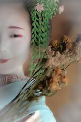 Maiko_20190630_121_26 (Maiko & Geiko) Tags: 20190630 eiunin temple kanohisa kyoto maiko 舞妓 永運院 叶久 京都 叶家 kanoya