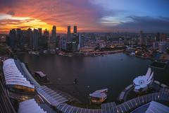 Singapore - Sunset Panorama (030mm-photography) Tags: rot asia asien bay blaue city flyer hochhaus licht lights marina nachtaufnahme night nightshot panorama sands singapore singapur skyline skyscraper sonnenaufgang stadt stadtlandschaft stunde the travel view wolkenkratzer