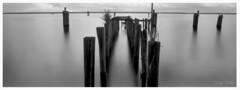 At a Distance. (A la Distancia). (Samuel Santiago) Tags: mamiyarb67 sekorc50mm 135mmfilm blackandwhite negative kentmere100 xtol nodilution scan epsonv600 2 400dpi sanford florida sammysantiago samuelsantiago landscapephotography fineartphotography piling longexposure ndfilter