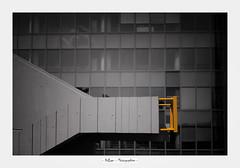 LYON_2019 (DidLam69) Tags: 2019 année appareilphoto architecture bâtiment canon5dmarkiv divers escalier fenêtre france lieux lyon nb objectif sculpture sigma85f14 type noirblanc blackwhite