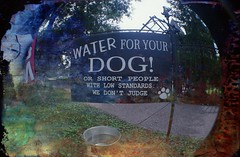 Who let the dogs out? Who, who, who, who, who? (Crusty Da Klown) Tags: sign funny humor comical dog dogs water lomo lomography fisheye film kodak summer bc britishcolumbia canada
