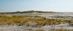 The Whisper of the Dunes | Silence (picsessionphotoarts) Tags: panorama beachphotography germany deutschland nikon nikonfotografie nikonphotography festbrennweite afsnikkor35mmf18g primelens nikond850 nordsee stpeterording lazydays northsea onthebeach beach amstrand wattenmeer nature green natur dunes dünen