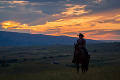 IMG_2482 (jeffreyshanor) Tags: wyoming nature explore travel leisure horse horses hiking scenic photography sunset clouds outside national sheridan visitsheridan pony yeehaw neigh neighhhh
