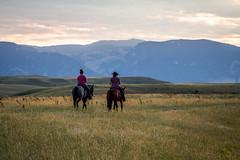 IMG_2447 (jeffreyshanor) Tags: wyoming nature explore travel leisure horse horses hiking scenic photography sunset clouds outside national sheridan visitsheridan pony yeehaw neigh neighhhh