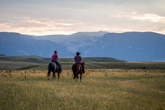 IMG_2446 (jeffreyshanor) Tags: wyoming nature explore travel leisure horse horses hiking scenic photography sunset clouds outside national sheridan visitsheridan pony yeehaw neigh neighhhh