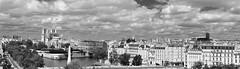 Paris (Philippe Haumesser (+ 8000 000 view)) Tags: panorama panoramique ladéfense ville city noiretblanc blackandwhite monochrome nikond7000 nikon d7000 reflex 2019 seine eau water nuages clouds arbres trees route street notredamedeparis