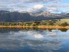 View From Cavalli Winery, Stellenbosch, South Africa (meg21210) Tags: stellenbosch cavalli vineyard wine tasting southafrica westerncape mountains pool water reflection houses valley clouds garden