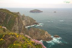 Naturalmente bonito...241/365 (cienfuegos84) Tags: nature naturaleza cabodepeñas asturias cantábrico mar sea