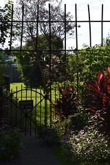 HFF Beware of Dog (Omunene) Tags: fence fencefriday desaixboulevard faubourgstjohn neworleans bewareofdog lawn yard gate