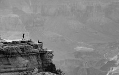 On the edge (Janne Räkköläinen) Tags: grandcanyon arizona us usa photo photographing photographer canyon onthecliff ontheedge canon6d canonphotography canonphotographing ef24105l blackwhite bnw bw landscape peoplephotographing peopleonthephoto nature outdoor outside naturelovers sight
