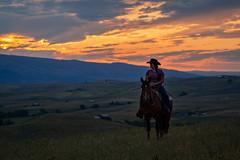 IMG_2484 (jeffreyshanor) Tags: wyoming nature explore travel leisure horse horses hiking scenic photography sunset clouds outside national sheridan visitsheridan pony yeehaw neigh neighhhh