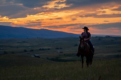 IMG_2481 (jeffreyshanor) Tags: wyoming nature explore travel leisure horse horses hiking scenic photography sunset clouds outside national sheridan visitsheridan pony yeehaw neigh neighhhh
