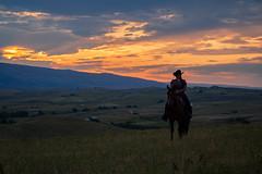 IMG_2480 (jeffreyshanor) Tags: wyoming nature explore travel leisure horse horses hiking scenic photography sunset clouds outside national sheridan visitsheridan pony yeehaw neigh neighhhh