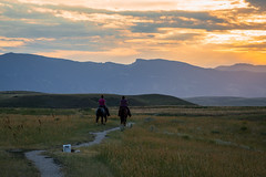 IMG_2449 (jeffreyshanor) Tags: wyoming nature explore travel leisure horse horses hiking scenic photography sunset clouds outside national sheridan visitsheridan pony yeehaw neigh neighhhh