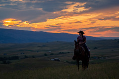 IMG_2483 (jeffreyshanor) Tags: wyoming nature explore travel leisure horse horses hiking scenic photography sunset clouds outside national sheridan visitsheridan pony yeehaw neigh neighhhh