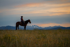 IMG_2466 (jeffreyshanor) Tags: wyoming nature explore travel leisure horse horses hiking scenic photography sunset clouds outside national sheridan visitsheridan pony yeehaw neigh neighhhh
