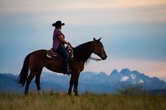 IMG_2465 (jeffreyshanor) Tags: wyoming nature explore travel leisure horse horses hiking scenic photography sunset clouds outside national sheridan visitsheridan pony yeehaw neigh neighhhh