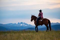 IMG_2459 (jeffreyshanor) Tags: wyoming nature explore travel leisure horse horses hiking scenic photography sunset clouds outside national sheridan visitsheridan pony yeehaw neigh neighhhh