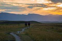 IMG_2451 (jeffreyshanor) Tags: wyoming nature explore travel leisure horse horses hiking scenic photography sunset clouds outside national sheridan visitsheridan pony yeehaw neigh neighhhh