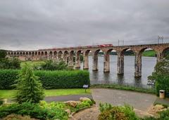 Top Spot (..Jim) Tags: class91 berwickupontweed royalborderbridge
