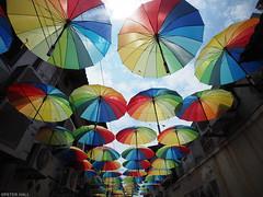 Umbrellas (peterphotographic) Tags: olympus em5mk2 microfourthirds mft ©peterhall penang malaysia seasia asia street streetphotography georgetown city cityscape urban art installation unesco p7250590edwm umbrella colour lookup color red yellow green blue