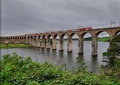 Riding High (..Jim) Tags: hst berwickupontweed royalborderbridge