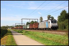 LINΞΛS 186 294-5 // Zichem 30-08-2019 (Erik Piussi) Tags: l35 traxx railpool 186 2945 zichem lineas