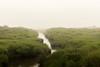 Left Fork's Herring Creek, shrouded in an August fog (John Piekos) Tags: august summer fog vacation marthasvineyard green herring dunes beach water hpswedding2008 creek mist edgartown katama marsh