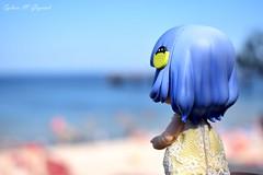 Bluebelle at the seaside (BookSmellLover) Tags: cupochebelle anime figurine poseable toyphotography collectible japan jfigure cute kawaii seaside balticsea